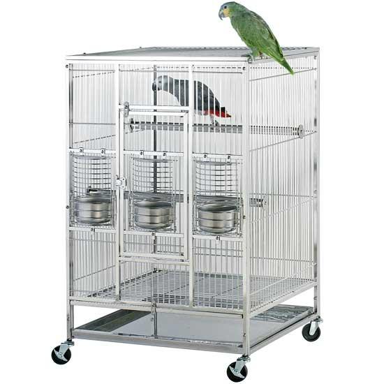 موارد و لوازم مورد نیاز پرندهها
