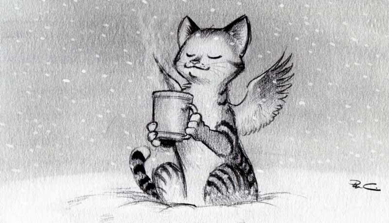 گربه و کافئین