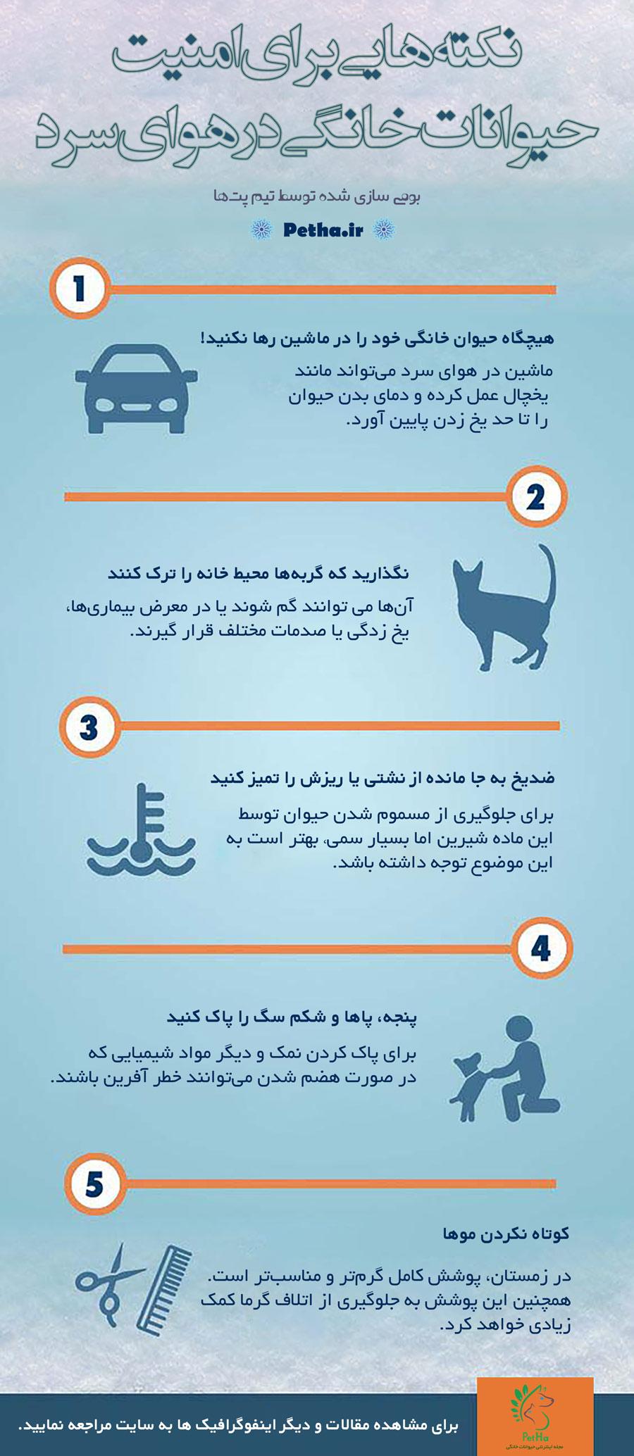 امنیت حیوانات در هوای سرد