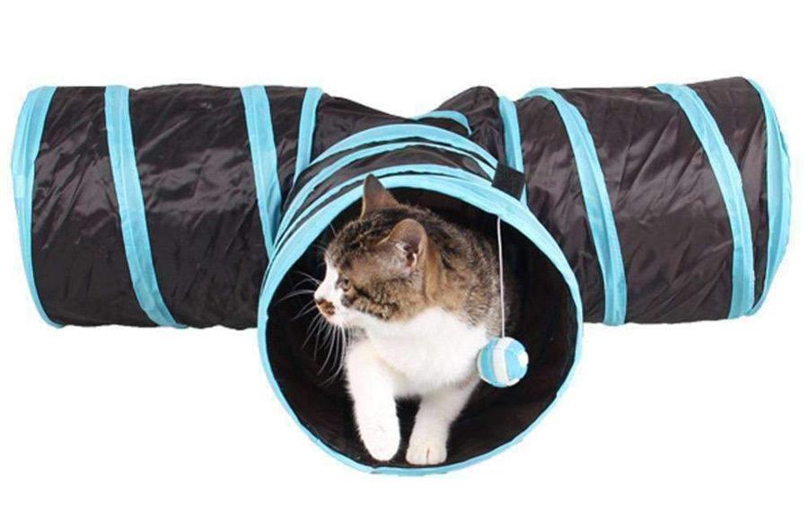 تونل گربه
