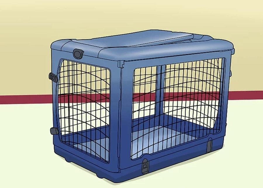 وقتی نمیتوانید مراقب سگ باشید، از یک محفظه استفاده کنید