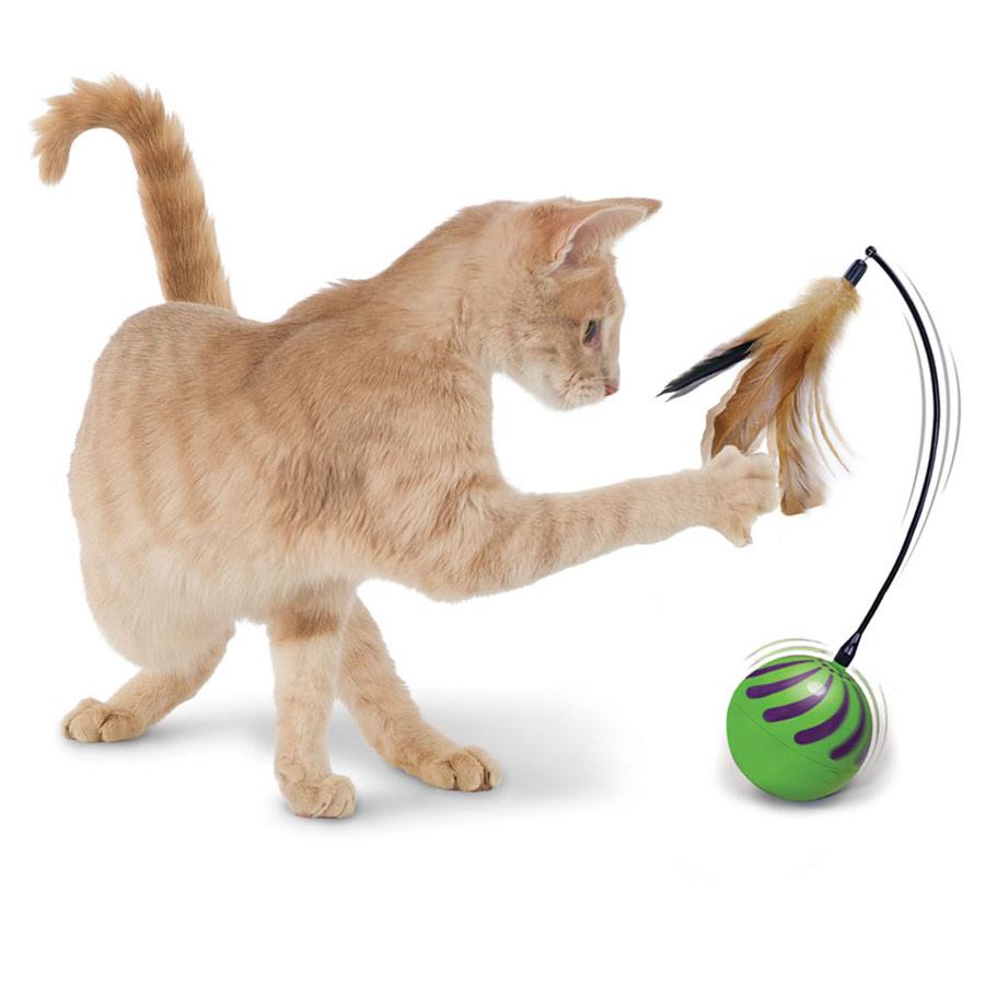 اسباب بازی گربه