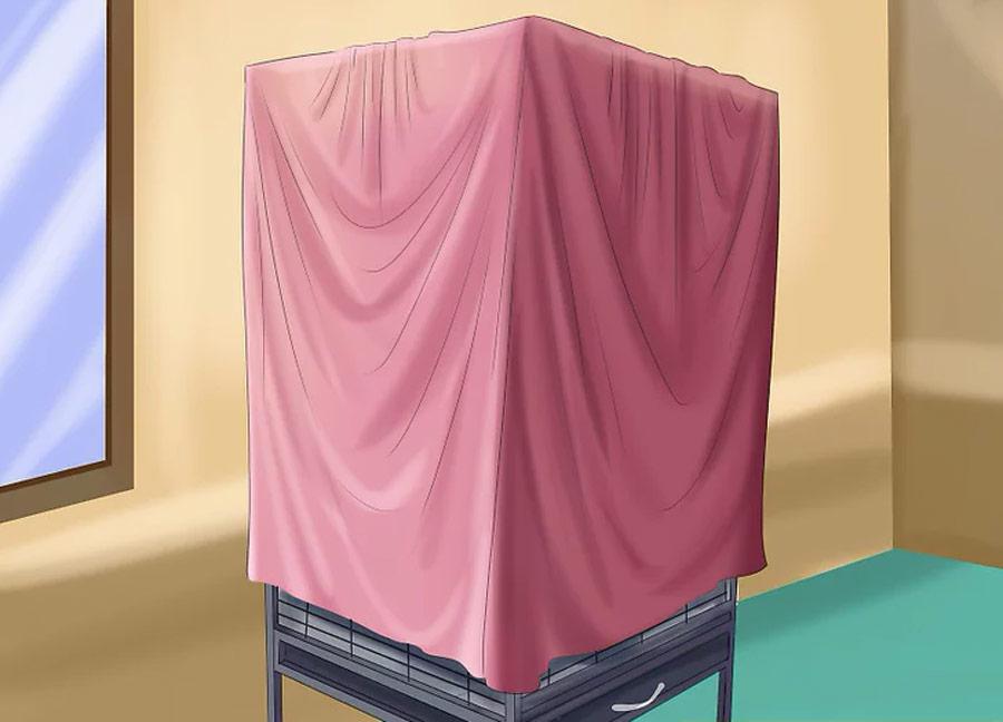 پوشاندن قفس قناری