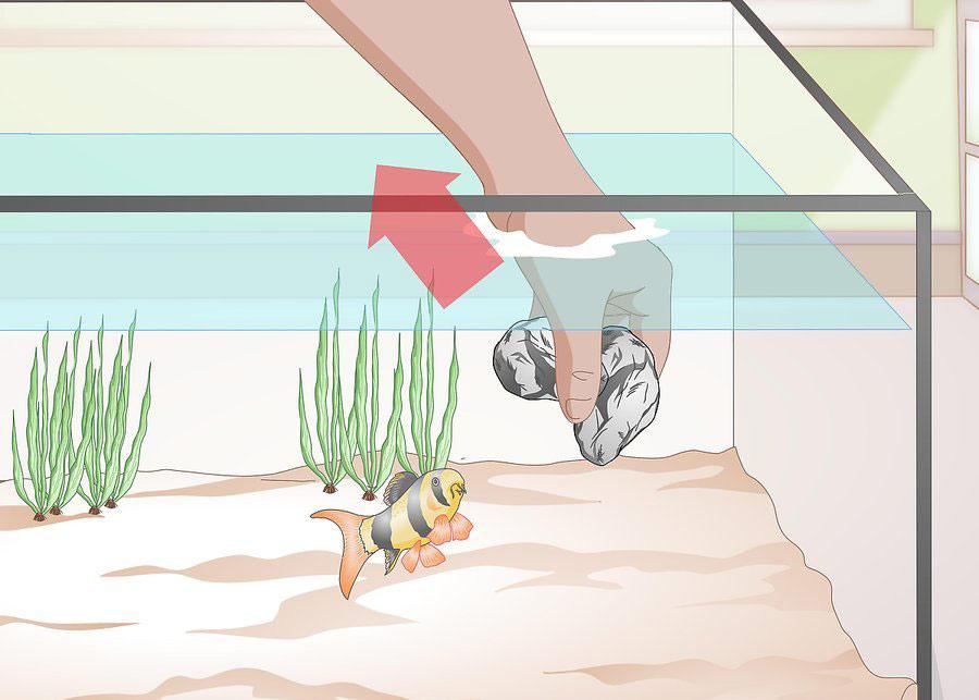 تمیز کردن وسایل تزیینی و گیاهان مصنوعی جرم گرفته در آکواریوم