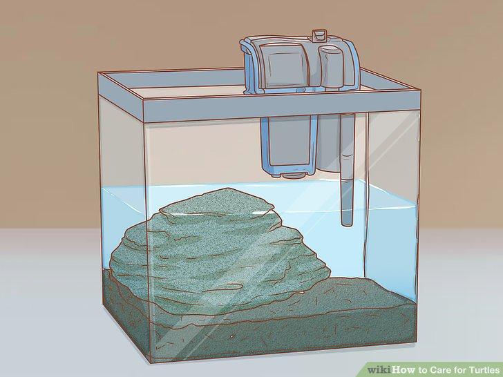محفظه ذخیره برای نگهداری لاک پشت