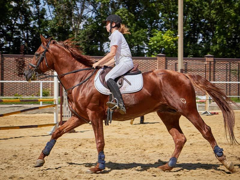 زن اسب سوار